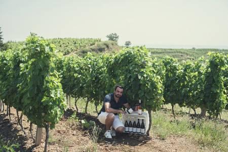 Vigneron à Félines - Domaine Romain d'Aniello